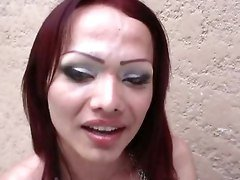 Feia, Transsexual, Shemale And Girl, Tube8.com